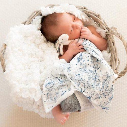 Blue Woodland Bunny Comforter